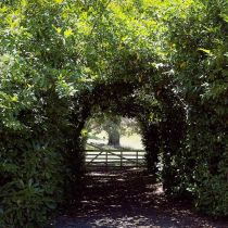 Brim Brim_Gate through the hedge.jpg