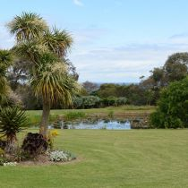 Seafarm_Succulents, lawn, pond and sea view.jpg