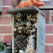 Alambee_Bees_Bee hotel with dragon.jpg