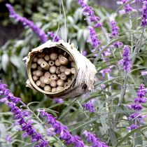 Alambee_Bees_Canned bee hotel.jpg
