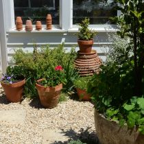 West End_Pots and greenhouse.jpg