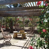 Coliban Springs rose arbour