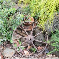 Candlebark wheel and garden bed
