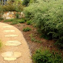 Melba_stepping-stones-and-garden-bed.jpg