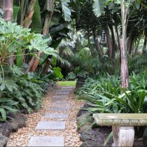 Tropical Paradise_Stepping stone pathway.jpg