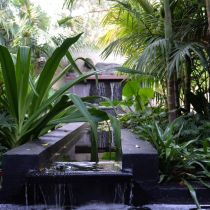 Tropical Paradise_Water feature.jpg
