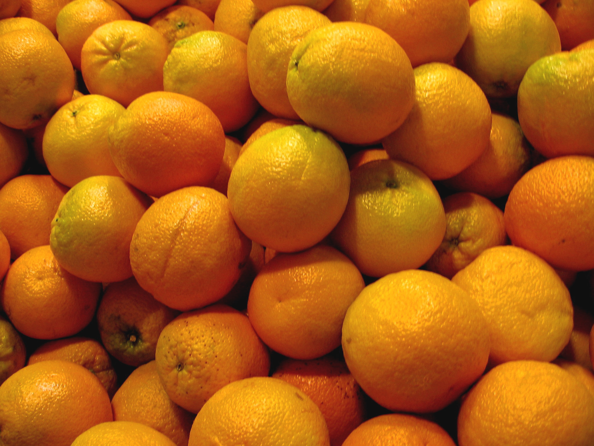 A Citrus Tale: from Gloom to Boom