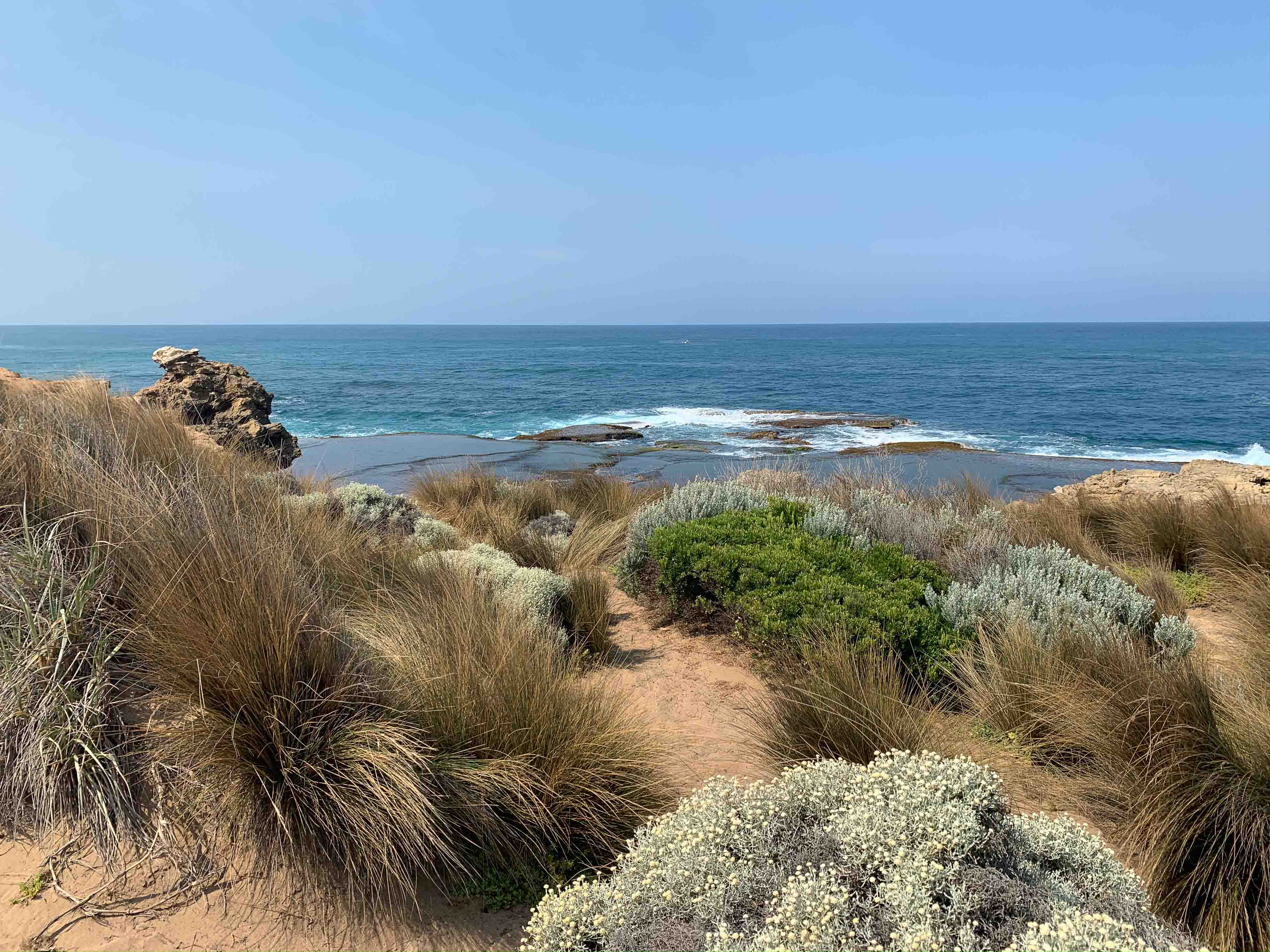 Garden lessons from the coast
