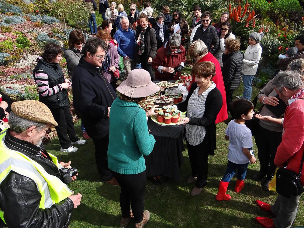 Colour and cake - OGV's launch a true celebration
